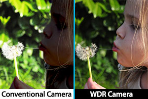 Wide Dynamic Range (WDR)