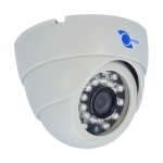 IR dome camera 1/3 HD Sensor 800TVL 3.6mm lens 24 LEDs 65ft IR IR-CUT